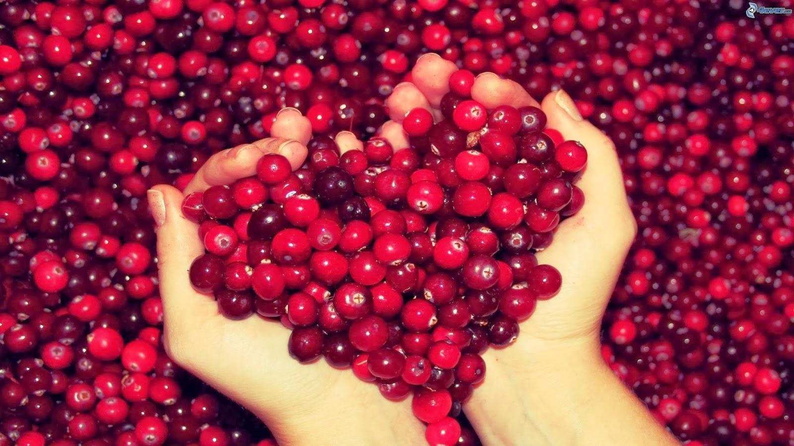 Arándano-Cranberry, fruta de grandes propiedades