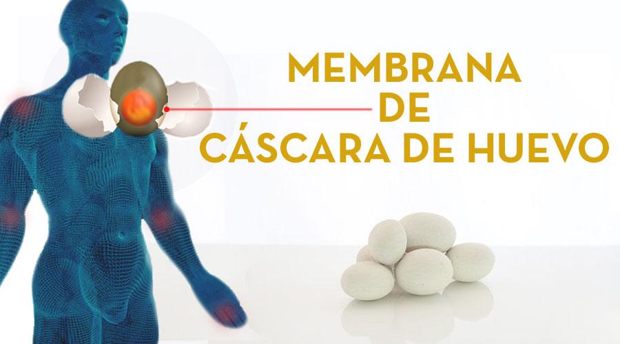 La Membrana de Huevo para el Dolor Articular