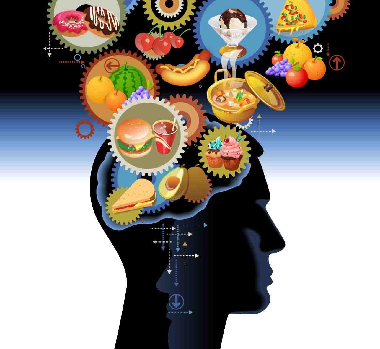 La importancia de Los nutrientes a nivel cerebral