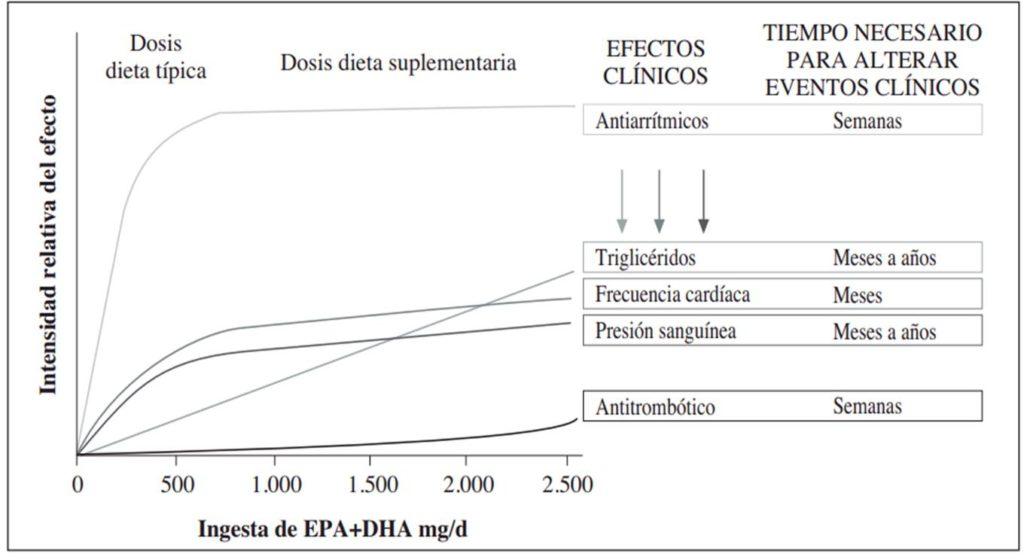 Beneficios de consumo de omega 3 durante el tiempo