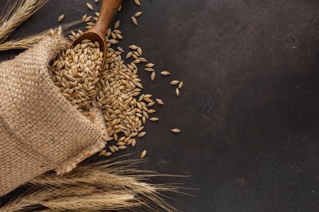 Salvado de trigo y su importancia en nuestra salud